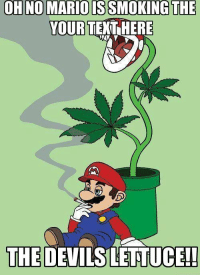 Mario, Text, and Lettuce: ISSMOKING  THE  YOUR TEXT HERE  THE DEVILS LETTUCE!!