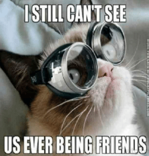 """I still can't see us ever being friends."" #grumpycatmemes #ripgrumpycat #memes: ISTILL CANT SEE  US EVER BEING FRIENDS  1ES.CU ""I still can't see us ever being friends."" #grumpycatmemes #ripgrumpycat #memes"
