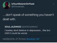 Blackpeopletwitter, Chill, and Brooklyn: IsYourMelaninOnFleek  @Ohwaawaa  don't speak of something you haven't  dealt with.  SOULJA/DINGO @AEROxDINGO  I lowkey dont believe in depression , like bro  chill it could be worse  09/06/2018, 01:15 from Brooklyn, NY <p>Reach out and support. Don't be a dick (via /r/BlackPeopleTwitter)</p>