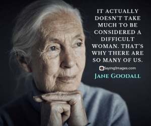 Quotes, Jane Goodall, and Com: IT ACTUALLY  DOESN'T TAKE  MUCH TO BE  CONSIDERED A  DIFFICULT  WOMAN. THAT'S  WHY THERE ARE  SO MANY OF US.  SayingImages.com  JANE GOODALL jane goodall woman quotes