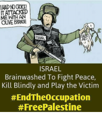 Memes, Israel, and 🤖: IT ATTACKED  MEE WITH AN  OLIVE BRANCH!  ISRAEL  AND  ISRAEL  Brainwashed To Fight Peace,  Kill Blindly and Play the Victim  #EndTheoccupation  #Free Palestine That victim card is worn out!  #EndTheOccupation  #FreePalestine
