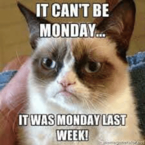 We thank Auntie Mary for sharing a Monday funny with us!!!  <3: IT CANT BE  MONDAY  TEWASIMONDAVLAST  WEEK! We thank Auntie Mary for sharing a Monday funny with us!!!  <3