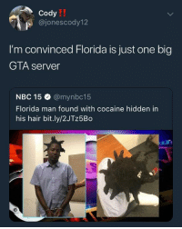 Blackpeopletwitter, Florida Man, and Cocaine: IT  Cody  @jonescody12  I'm convinced Florida is just one big  GTA server  NBC 15 @mynbc15  Florida man found with cocaine hidden in  his hair bit.ly/2JTz5Bo <p>Can we build a wall around Florida too? (via /r/BlackPeopleTwitter)</p>