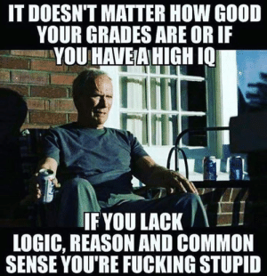DV6: IT DOESN'T MATTER HOW GOOD  YOUR GRADES ARE OR IF  YOU HAVEA HIGH I0  IF YOU LACK  LOGIC, REASON AND COMMON  SENSE YOU'RE FUCKING STUPID DV6