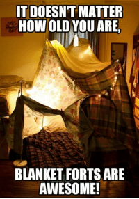 You're never too old to sit in a fort.: IT DOESN'T MATTER  HOW OLD YOU ARE  BLANKET FORTS ARE  AWESOME! You're never too old to sit in a fort.