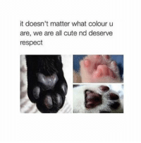Cute, Respect, and Babes: it doesn't matter what colour u  are, we are all cute nd deserve  respect Spam me with likes thanks babes ❤️