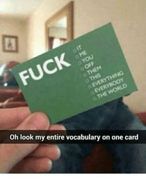 F The World.: IT  FUCK  ME  YOU  OFF  THEM  THIS  EVERYTHING  EVERYBODY  THE WORLD  Oh look my entire vocabulary on one card F The World.