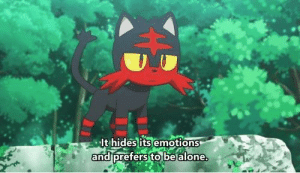 Being Alone, Anime, and Irl: It hides its emotions  andiprefers to be alone anime_irl