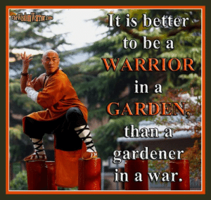 Amazon, Goals, and Life: It is better  to be a  WARRIOR  in a  GARDEN  than a  gardener  in a war. It is better to be a warrior in a garden, than a gardener in a war.       You may be wondering how it is that warriors teach the skills of violence, but talk about peace and tranquility. As strange as it may seem to some people, the two are not mutually exclusive. Think about it. The monks at the Shaolin Temple are peaceful people, but they teach the arts of self-defense.        All true warriors want peace. A life of peace is where you can pursue your goals, spend quality time with your loved ones, and live life to the fullest. But as history as proven time and time again, living a peaceful life is not always possible, so we must train in martial arts, even in times of peace.       George Washington stated that those who want peace should prepare for war, and this same train of thought has been taught for hundreds of years. While we should live in peace and love, we should also understand how to fight and defend ourselves.       Knowing how to fight is not in opposition to peace and love, but is actually a part of loving peace and our loved ones. If you love someone, you must be willing to defend them. In addition, being willing to defend someone is worthless, if you don't have the ability or training to do so.       Yes, teach your students the way of peace and love, but also teach them how to stand up against the evil in this world. Teach them to stand against those who hate peace and want to destroy our way of life, but also give them the tools to stand successfully. Bohdi Sanders ~ excerpt from, BUSHIDO: The Way of the Warrior, available from Amazon at: https://www.amazon.com/dp/1937884201 or from The Wisdom Warrior website at: https://thewisdomwarrior.com.