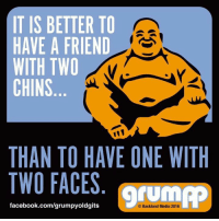 Memes, Two-Face, and Would You Rather: IT IS BETTER TO  HAVE A FRIEND  WITH TWO  CHINS  THAN TO HAVE ONE WITH  TWO FACES  facebook.com/grump  Backland Media 2016 What would you rather have?