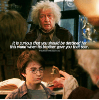 Memes, 🤖, and Scar: It is curious that wou should be destined for  this wand when its brother gave you that Scar.  THELIFEOFAWEASLEYI IIG RIP Sir John Hurt, who died at the age of 77 -* --- Raise your wands for John Hurt, our perfect Ollivander -* ---- HarryPotter