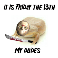 My Dudes: IT IS FRIDAY THE 13TH  MY DUDES