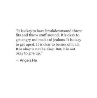 """Jealous, Okay, and Stuff: """"It is okay to have breakdowns and throw  fits and throw stuff around. It is okay to  get angry and mad and jealous. It is okay  to get upset. It is okay to be sick of it all  It is okay to not be okay. But, it is not  okay to give up.""""  - Angela He"""