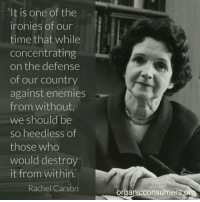 """Memes, Irony, and 🤖: """"It is one of the  ironies of our  time that while  concentrating  on the defense  of our country  against enemies  from without  we should be  so heedless of  those who  would destroy  it from within.  Rachel Carson  onsumers or  Organic In her time, environmental activist Rachel Carson urged the public and the government to fight to protect the environment. Today, with the rapidly changing climate and an incoming administration full of corporate cronies and climate change deniers, her words may be more important than ever: http://orgcns.org/2i1Aknd"""
