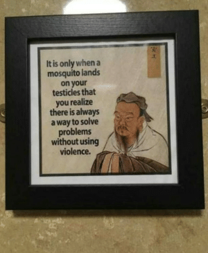 Words of wisdom by djhitekz94 MORE MEMES: It is only when a  mosquito lands  on your  testicles that  you realize  there is always  a way to solve  problems  without using  violence. Words of wisdom by djhitekz94 MORE MEMES