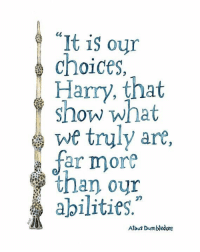 """Harry Potter and the Chamber of Secrets: It is our  choices.  Harry, that  show what  we truly are  A far more  than our  abilities,""""  Albus Dumbledore Harry Potter and the Chamber of Secrets"""