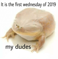 Wednesday: It is the first wednesday of 2019  my dudes