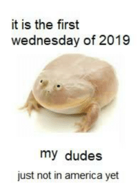 Wednesday: it is the first  wednesday of 2019  my dudes  just not in america yet
