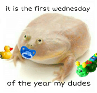 Wednesday: it is the first wednesday  of the year my dudes