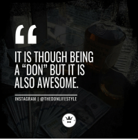 "Instagram, Tumblr, and Blog: IT IS THOUCH BEING  A ""DON"" BUT IT IS  ALSO AWESOME  INSTAGRAM 