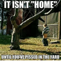 "Memes, Home, and 🤖: IT ISNT ""HOME/  UNTINOUVEiPİSSEDINTHE YARD Double tap if you've pissed in your yard! 😂 Lets count to 1000 in the comments I'll start 1!"