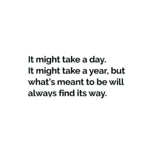 Day, Will, and Whats: It might take a day.  It might take a year, but  what's meant to be will  always find its way.