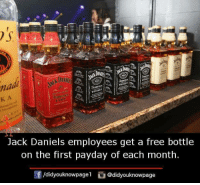 Memes, Free, and Jack Daniels: IT  na  K A  wi  Jack Daniels employees get a free bottle  on the first payday of each month.  f/didyouknowpagel @didyouknowpage