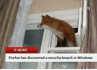 News, Windows, and Firefox: IT NEWS  Firefox has discovered a security breach in Windows Good job firefox