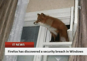 Idk if this is funny but i like it: IT NEWS  Firefox has discovered a security breach in Windows Idk if this is funny but i like it