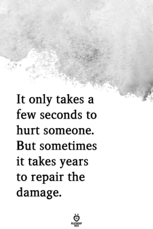 The Damage: It only takes a  few seconds to  hurt someone.  But sometimes  it takes vears  to repair the  damage.