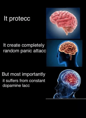 MeIRL, Random, and Create: It protecc  It create completely  random panic attacc  But most importantly  it suffers from constant  dopamine lacc Meirl