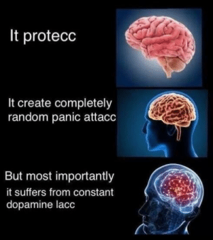 Hell, Yes, and Random: It protecc  It create completely  random panic attacc  But most importantly  it suffers from constant  dopamine lacc hell yes