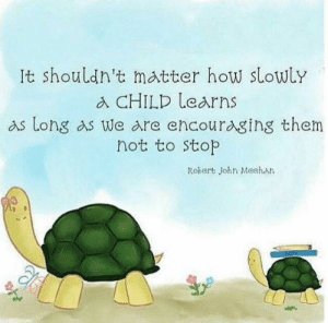 Memes, 🤖, and How: It shouldn't matter how slowLy  a CHILD learns  as Long as we are encouraging them  not to stop  Robert John Meehan