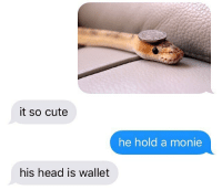 @evaloulou322 us: it so cute  he hold a monie  his head is wallet @evaloulou322 us