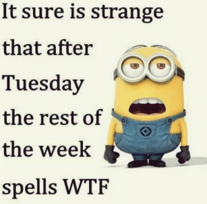 Top 40 Funny despicable me Minions Quotes #famous: It sure is strange  that after  Tuesday  the rest of  the week  spells WTF Top 40 Funny despicable me Minions Quotes #famous