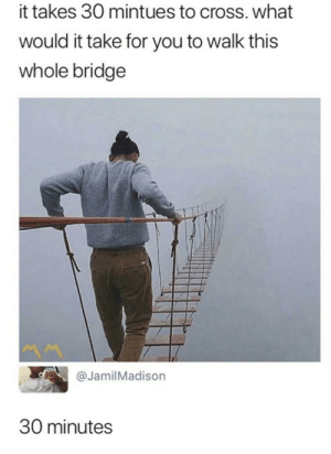 Memes, Cross, and Http: it takes 30 mintues to cross. what  would it take for you to walk this  whole bridge  JamilMadison  30 minutes Well he's not wrong via /r/memes http://bit.ly/2ZLGPhx