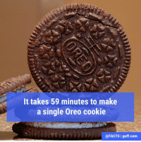 Memes, 🤖, and Oreo: It takes 59 minutes to make  a single Oreo cookie  @FACTS I guff com Which is crazy, because it takes like 59 seconds to finish eating an entire package of them.