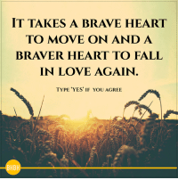 Fall, Love, and Memes: IT TAKES A BRAVE HEART  TO MOVE ON AND A  BRAVER HEART TO FALL  IN LOVE AGAIN  TYPE YES IF YOU AGREE <3 Be Human Be Kind