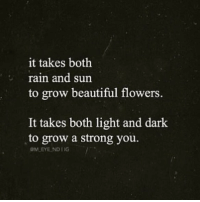 ❤️️: it takes both  rain and sun  to grow beautiful flowers.  It takes both light and dark  to grow a strong you. ❤️️