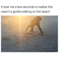 This just fucked me up.: It took me a few seconds to realise this  wasn't a gorilla walking on the beach This just fucked me up.