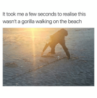 😂😂😂👌 | More 👉 @miinute: It took me a few seconds to realise this  wasn't a gorilla walking on the beach 😂😂😂👌 | More 👉 @miinute