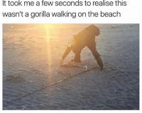 Lmaooo wtf: It took me a few seconds to realise this  wasn't a gorilla walking on the beach Lmaooo wtf