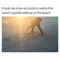 😂😂😂😂: It took me a few seconds to realize this  wasn't a gorilla walking on the beach 😂😂😂😂