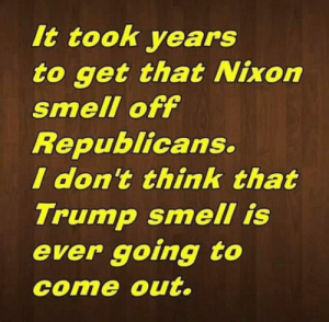 Gets That: It took years  to get that Nixon  smell off  Republicans.  I don't think that  Trump smell is  ever going to  come out.