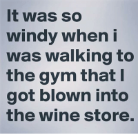 windi: It was so  windy when i  was walking to  the gym that I  got blown into  the wine store.