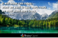 It will never rain roses: when we want to have more roses we must plant more trees. - George Eliot: It wil never rain roses:  when we want to have more roses  e must plant more trees.  George Eliot  Brainy  Quote It will never rain roses: when we want to have more roses we must plant more trees. - George Eliot
