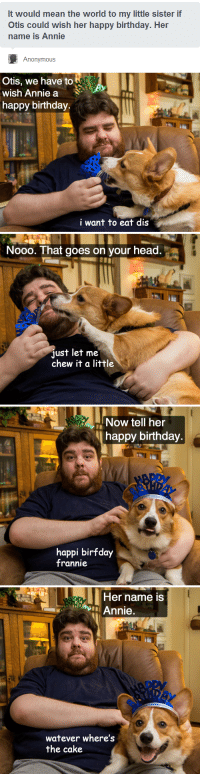 """<p><a class=""""tumblr_blog"""" href=""""http://thefrogman.me/post/47625345140/happy-birthday-annie-from-froggie-and-otis"""" target=""""_blank"""">thefrogman</a>:</p> <blockquote> <p>Happy birthday, Annie.</p> <p>From Froggie and Otis</p> </blockquote>: It would mean the world to my little sister if  Otis could wish her happy birthday. Her  name is Annie  Anonymous   Otis, we have to  wish Annie a  happy birthday  i want to eat dis   Nooo. That goes on vour head.a  just let me  chew it a little   Now tell her  happy birthday  happi birfday  frannie   Her name iS  Annie  watever where's  the cake <p><a class=""""tumblr_blog"""" href=""""http://thefrogman.me/post/47625345140/happy-birthday-annie-from-froggie-and-otis"""" target=""""_blank"""">thefrogman</a>:</p> <blockquote> <p>Happy birthday, Annie.</p> <p>From Froggie and Otis</p> </blockquote>"""
