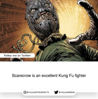 Memes, Villain, and 🤖: Ita  Follow me on Twitter!  Scarecrow is an excellent Kung Fu fighter  CO VILLA INTRUEFACTS VILLAIN PEDIA Imagine getting your ass handed you by Scarecrow 😂 dccomics like geek comics
