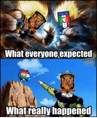 Memes, Spain, and Italy: ITALIA  FIG  What everyone expected  10  Whatreallyhappened Spain vs Italy