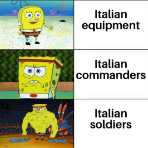 The soldiers were very good but they simply didn't have the equipment and leadership to compete in WW2: Italian  equipment  Italian  |commanders  Italian  soldiers The soldiers were very good but they simply didn't have the equipment and leadership to compete in WW2